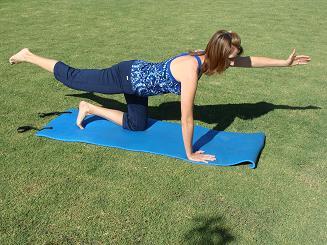 kneeling arm and leg exercis