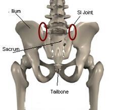 sacroiliac joint pain anatomy image