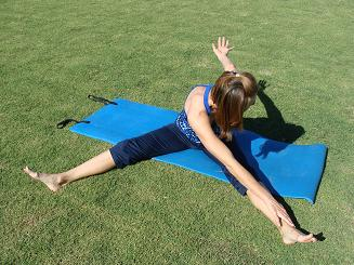 pilates exercise picture