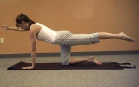 free core workout exercise image